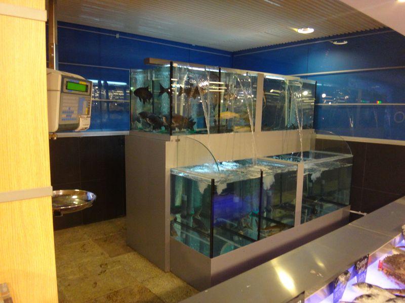Торговые аквариумы для продажи живой рыбы в магазинах и супермаркетах